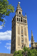 The Giralda, bell tower of the Cathedral of Seville