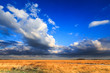 Meadow landscape with beautiful cloudscape