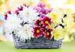Bouquet of beautiful chrysanthemums in wicker basket