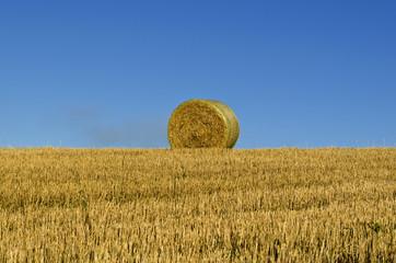 Hayball on a field