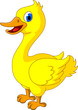 happy yellow chick cartoon