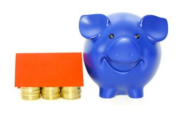 Geldhaus mit blauem Schwein