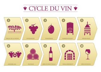 Cycle du vin
