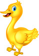 cute yellow chick cartoon