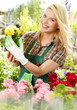 Female Florist Or Gardener In ...