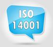 Bulle : ISO 14001
