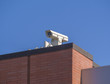 Security camera on roof of commercial building