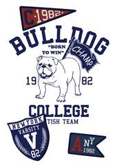 BULL DOG COLLEGE