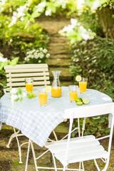 Erfrischung mit Saft im sommerlichen Garten