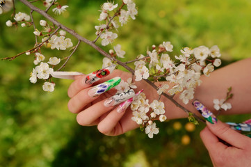 against the background of flowering branches of women's hands wi