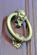 brass bronze knocker and ancient door knocker