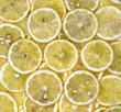 Cytryny-plastry 2