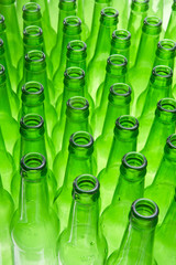 Empty Beer Bottles