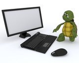 tortoise with a computer
