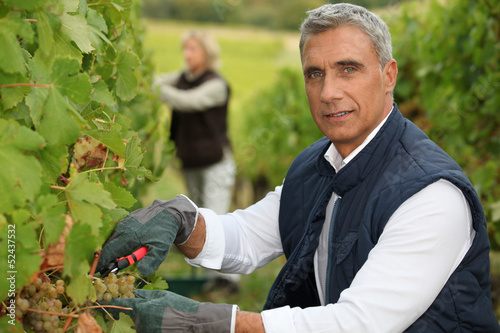 Winegrower