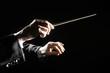 Leinwanddruck Bild - Orchestra conductor hands baton