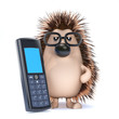Cute hedgehog works out his tax bill