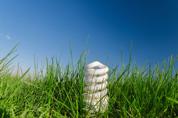 energy saving bulb in green grass under deep blue sky