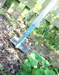 binette ,outil de jardinage