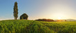 Sunset over green wheat field with path and chapel in Slovakia -
