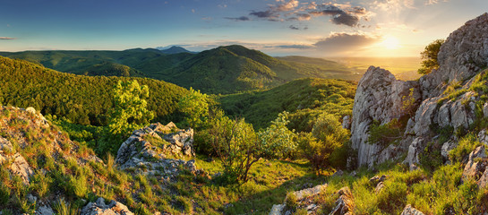 Mountain forest panorama - Slovakia
