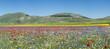 Castelluccio Italia 2012  40X90