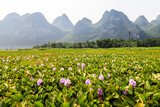Li river landscape in South China
