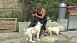Footage of a young woman playing with some puppies