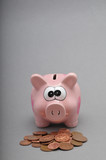 Piggy Bank With Savings