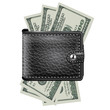 Leather wallet  with dollar USA. Vector