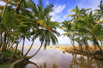 Freshwater river at Las Terrenas beach, Samana peninsula