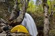 清流と自然の森のキャンプ