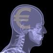 Gold euro in head