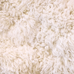 White fur as abstract background