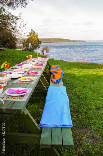 picnic by lake - 52473130
