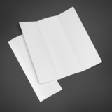 Blank Trifold Brochure poster