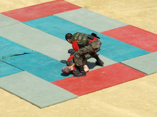 Artes marciales  Guardia Real 2