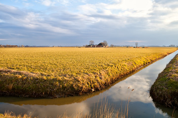 Dutch farm by river before sunset