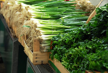 Green spring onion on market
