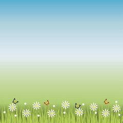 Seamless meadow with grass, flowers and butterflies.