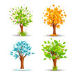 vector illustration of tree of different season
