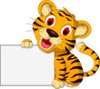 cute baby tiger with blank sign