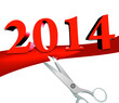 Inauguration of the new year, 2014