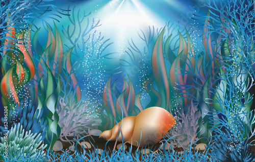 Underwater wallpaper with seashell. vector