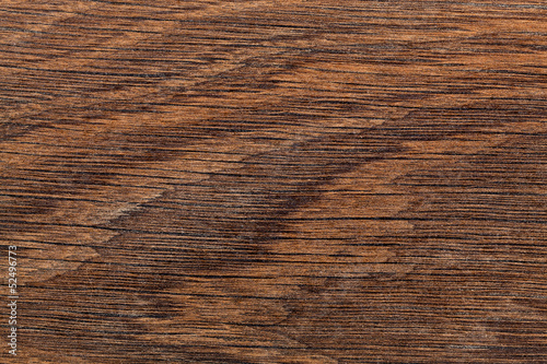 Texture of a tree for a background