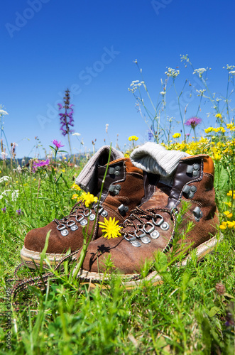 hiking boots meadow © flashpics
