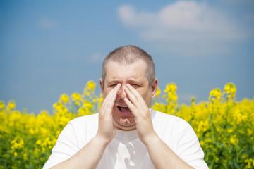 Man sneezes on canola field