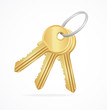 Vector Golden Keys bunch - 52505560