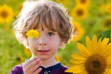 Kind mit Löwenzahn auf einem Sonnenblumenfeld