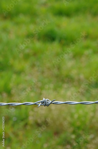 vertical picture of barbed wire in meadow